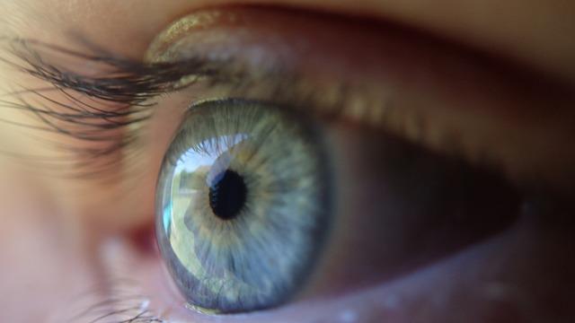 eye-369557_640.jpg